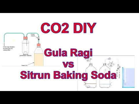 AQUASCAPE - CO2 DIY Gula-Ragi dan Sitrun-Baking Soda