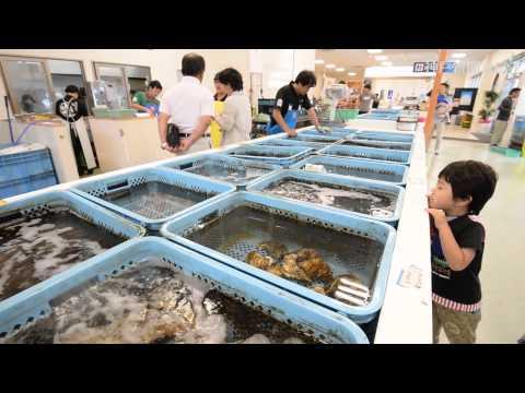 水族館みたいな魚市場・姫路とれとれ市場
