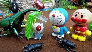 Video Doraemon and Anpanman's insects collected!Found a huge beetle!upyon MP3, 3GP, MP4, WEBM, AVI, FLV Juli 2018