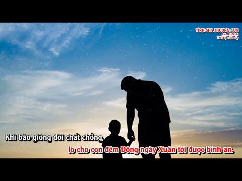 Bài ca: TÌNH CHA THƯƠNG CON – Lm. Bùi Ninh – Giọng ca: Sâm Ly