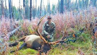 Nonton Idaho Archery 6x8 Bull Elk Hunt Brian Rae 2016 Film Subtitle Indonesia Streaming Movie Download