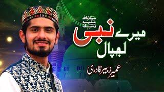 Video Mere Nabi Lajpal Diya Kia - Umair Zubair Qadri MP3, 3GP, MP4, WEBM, AVI, FLV September 2019