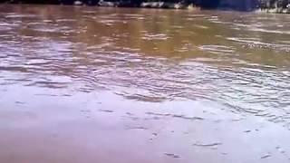 рыбалка в забайкалье на реке шилка видео