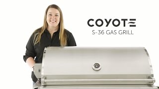 Take a close look at the key features of the Coyote S Series 36 inch Gas Grill in this video review!  Coyote S-36 Available Here: https://www.bbqguys.com/coyote/s-series-36-inch-4-burner-built-in-propane-gas-grill-with-rapidsear-infrared-burner-and-rotisserie-c1sl36lpFull Line of Coyote Grills: https://www.bbqguys.com/brands/coyote-outdoor-living?sstring%5B0%5D=coyoteCoyote Signature Cooking Grates: https://www.bbqguys.com/coyote/signature-cooking-grates-for-34-and-36-inch-gas-grills-csigrate12Featuring: Jordan ParrishFilmed by: Blaine BoudreauxEdited by: Paris Frederick