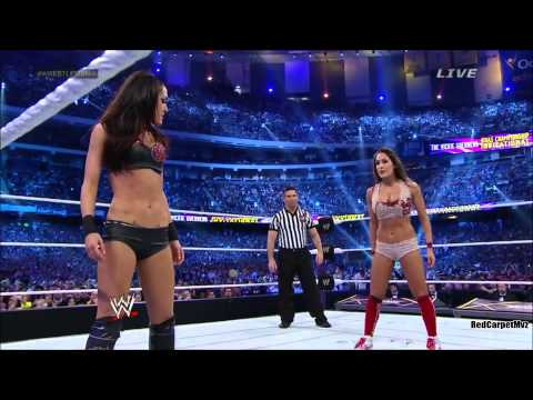 WWE divas fighting each other