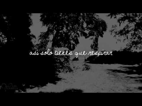 Ed Sheeran - Wake me up. (español)