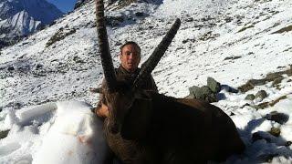 Bagnes Switzerland  city photos gallery : Ibex hunting - Switzerland
