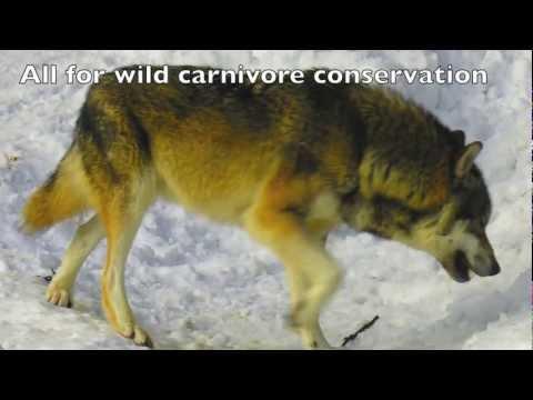 Slovakia expedition video summary