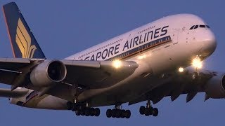 Video JAWDROPPING Dusk Arrivals | B777 A330 A380 | Melbourne Airport Plane Spotting MP3, 3GP, MP4, WEBM, AVI, FLV Desember 2018