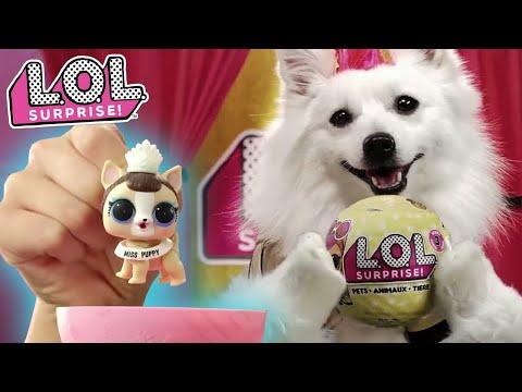LOL Surprise!   Series 3 Pets   :30 Commercial