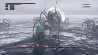 Bloodborne - New Game Plus 6 Rom the Vacuous Spider Boss Fight