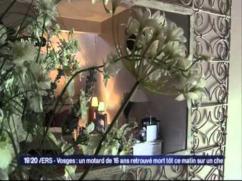 Extrait  19/20 TV FRANCE 3 LORRAINE