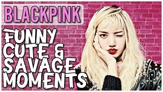 Video BLACKPINK FUNNY CUTE & SAVAGE MOMENTS  [Try Not To Smile Challenge] MP3, 3GP, MP4, WEBM, AVI, FLV Agustus 2018