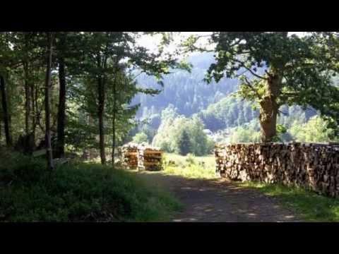 Arte & Natura, una provincia da scoprire