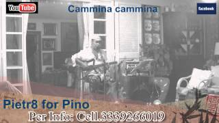 cammina cammina pietr8 for pino cover