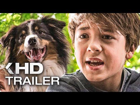 FÜNF FREUNDE UND DAS TAL DER DINOSAURIER Teaser Trailer German Deutsch (2018)