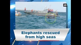 Trincomalee (Sri Lanka), July 25 (ANI): Two wild elephants washed out to sea were saved from drowning by the Sri Lankan Navy.