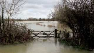 Leavenheath United Kingdom  City pictures : Dedham Vale under flood 9th February 2014