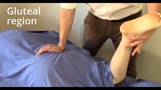 Video Massage Tutorial: Gluteal region (gluteus maximus, piriformis, sciatica) MP3, 3GP, MP4, WEBM, AVI, FLV Agustus 2018