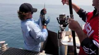RED HOT SAILFISH ACTION