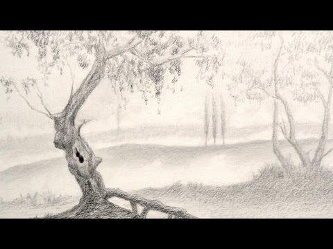 Dibujando paisajes: cómo dibujar un árbol - Arte Divierte