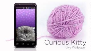 Curious Kitty Live Wallpaper YouTube video