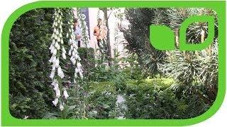 Das andere Gartendesign von Auderset-Fischer (Chelsea 2014)