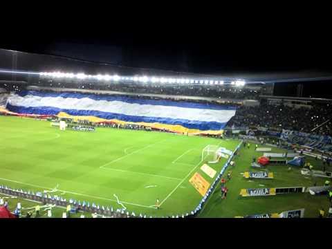 Millonarios la hinchada mas grande - Comandos Azules - Millonarios - Colombia - América del Sur