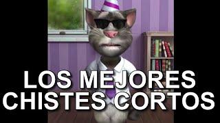 Los Mejores Chistes Cortos Del Gato Tom