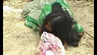 A Woman's Life in Bangladesh full download video download mp3 download music download