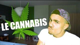Le cannabis et ses effets