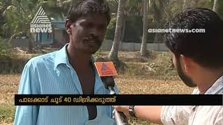 Palakkad records 40 degrees Celsius