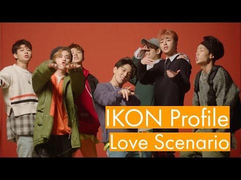 Video IKON Profile |