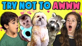 Video KIDS REACT TO TRY NOT TO AWW CHALLENGE #3 MP3, 3GP, MP4, WEBM, AVI, FLV Juli 2018
