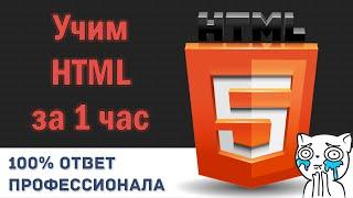 Учим HTML за 1 Час! #От Профессионала