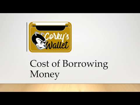 The Cost of Borrowing Loans