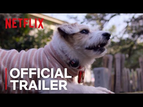 The First Trailer for Netflix s Dogs Documentary
