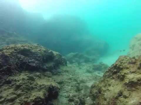חוף ים - חוף הסלע בת ים 8.10.14 צלילת בוקר.