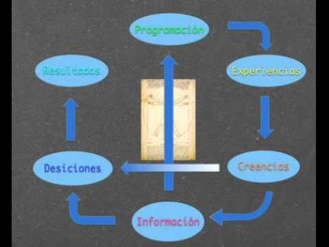 Fundamentos de la Inteligencia Financiera