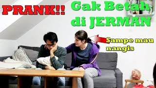 Video PRANK MAU PINDAH KE INDONESIA GAK BETAH DI JERMAN MP3, 3GP, MP4, WEBM, AVI, FLV April 2019