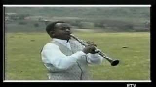 Dawit Frew Hailu Ambasel tizta