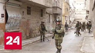 Очищенный от бандитов Алеппо возвращается к жизни