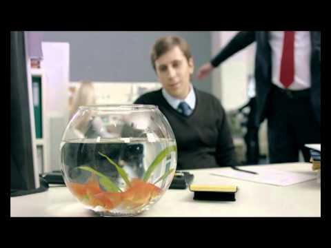 Глицин. Рыбка (офис)
