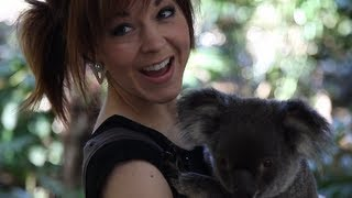 Stirling Australia  city pictures gallery : Koalas- Lindsey Stirling