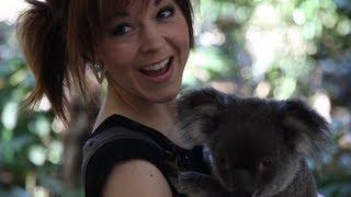 Stirling Australia  city photo : Koalas- Lindsey Stirling
