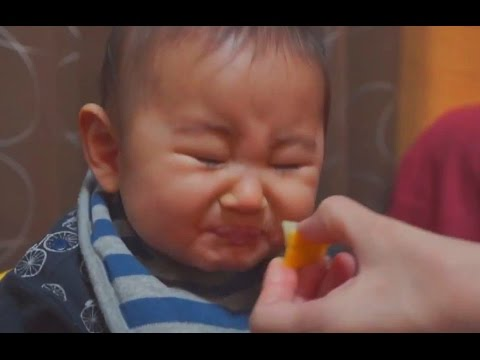 Babies Eating Lemons for First Time Compilation 2014 – FUNNY VideoS 2014 – 720p