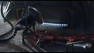 Nonton Alien Covenant All Death Scenes In Digital Hd Film Subtitle Indonesia Streaming Movie Download