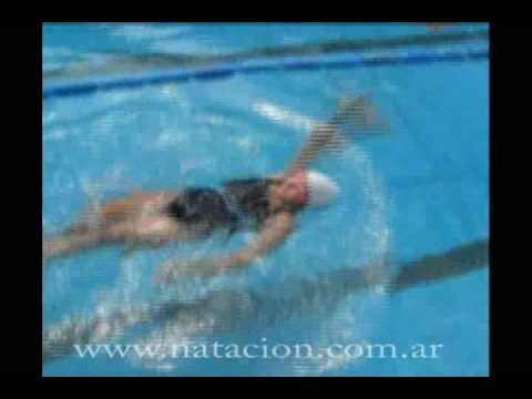Natación - Técnica espalda