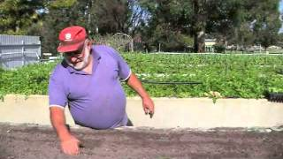 Muchea Australia  City new picture : How to Make a Living Farming a Quarter Acre