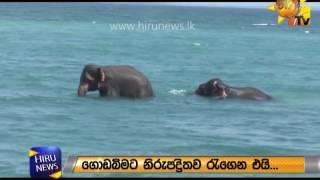 Hiru News Sri Lanka's Number One News Portal. Website: www.hirunews.lk Follow Us On Like us on Facebook: https://www.fb.com/hirunews Follow us via ...